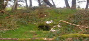 St Bridget's Well, Lough Alaan